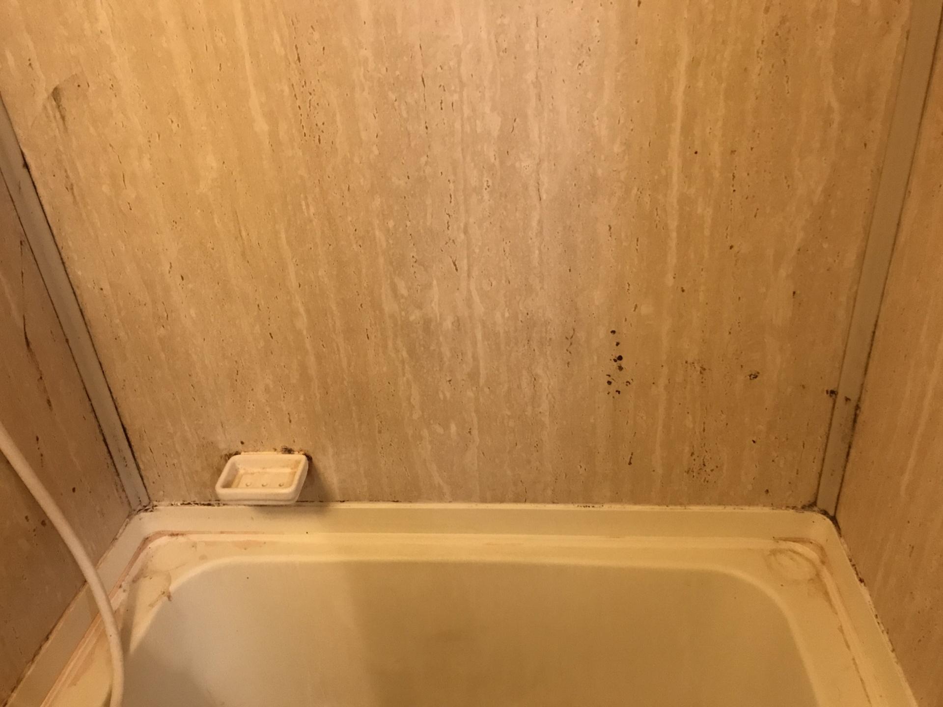 浴室のカベも黒い汚れが点々と…