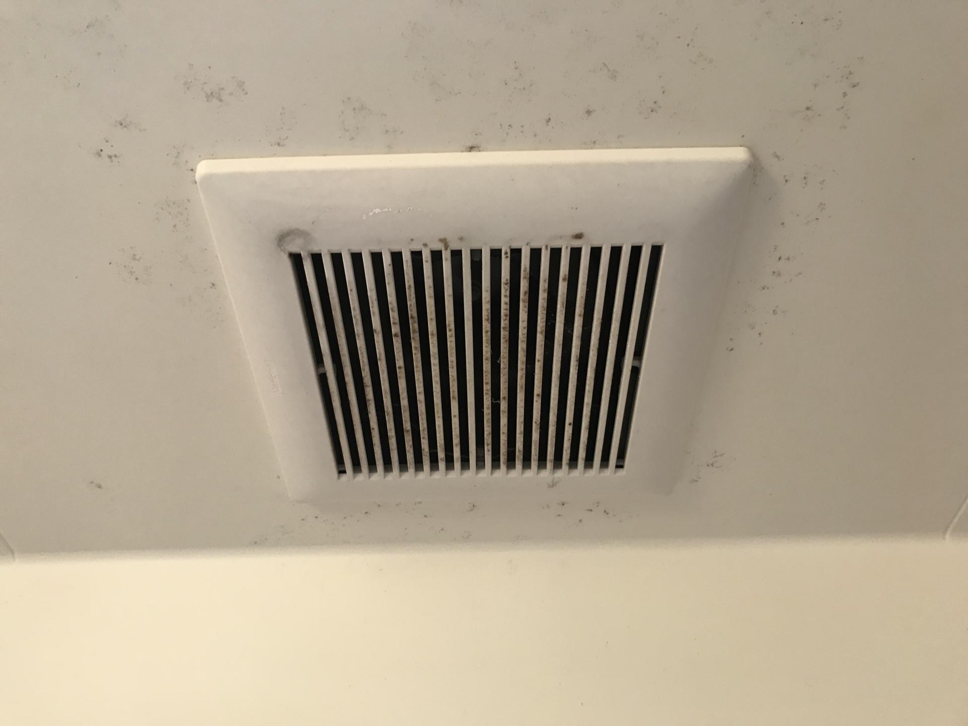 天井+換気扇にはカビも