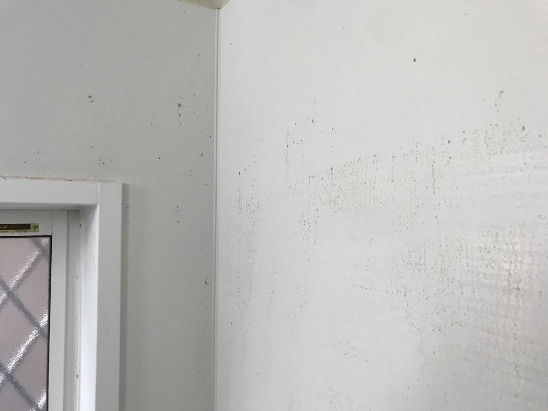 白い壁だと皮脂汚れ目立ちます