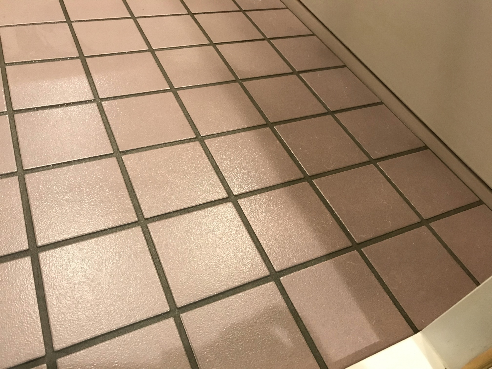 床の水垢がしっかり除去されました