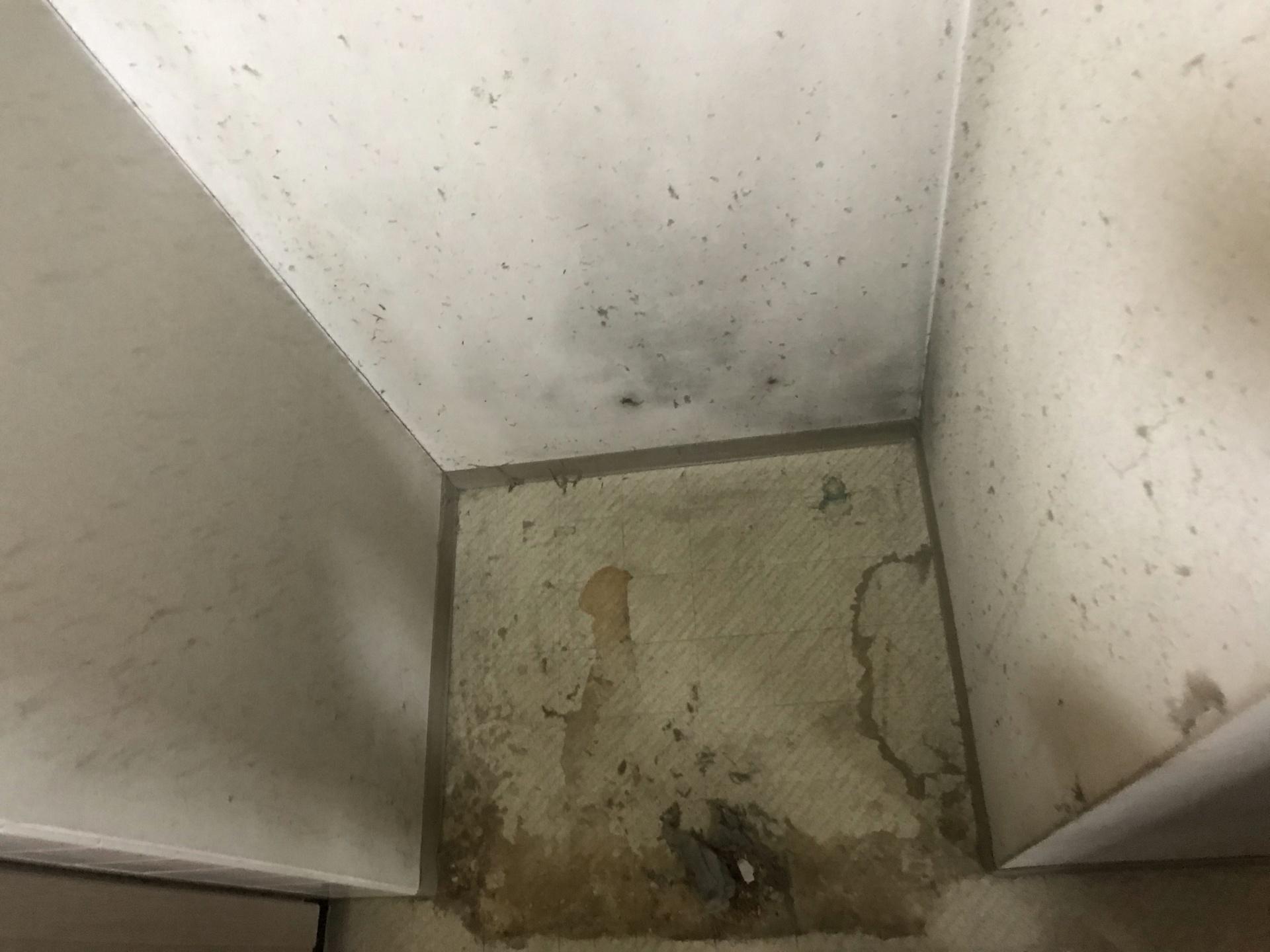 こちらは冷蔵庫が置いてあった床+クロスです