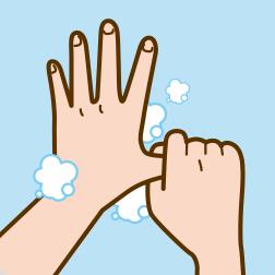 ⑤親指と手のひらをねじり洗いします。