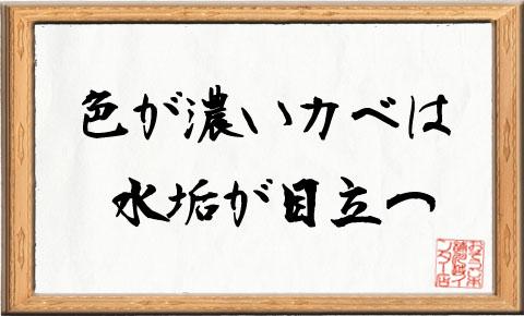 【本日の格言】~色が濃いカベは水垢が目立つ~